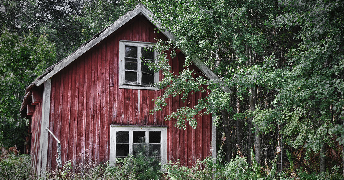 Rött slitet trähus i skogen
